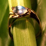 mclean-jewelry-Sri-Lankian-Blue-Moonstone-and-gold-ring
